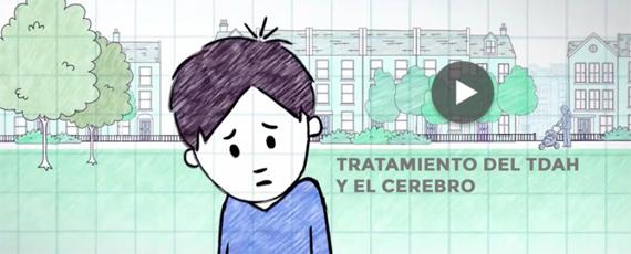 ¿Quiéres entender cómo actúa el tratamiento del TDAH en el cerebro?
