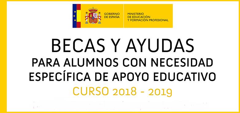 Convocatoria de ayudas para el alumnado con NEAE 2018-2019